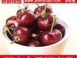 冠县优质油桃批发厂家 大樱桃代收价格