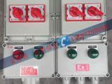 专业定做配电箱-防爆箱-照明箱-防爆配电箱 IP65
