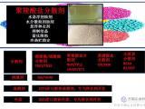 聚羧酸盐分散剂 水悬浮剂助剂 水分散粒剂助剂  悬浮种衣剂