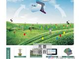 农林物联网技术可助于防治林业病虫害问题