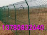 安全防护绿色网子  养殖牧场隔离网   便宜的圈地网