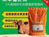 育肥牛养殖方法  育肥牛的饲养与管理