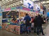 2017第十六届中国国际玩具及教育设备展览会