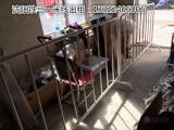 沈阳东程会展桌椅出租,铁马出租,篷房租赁一米线演讲台