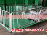 优质的小猪活动床的价格 双体复合保育床尺寸猪用保育床厂家批发