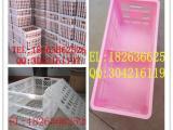 种蛋运输筐 36枚种蛋筐 塑料蛋筐生产厂家
