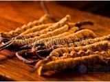 精品冬虫夏草提取物 虫草多糖30% 纯天然制品  现货包邮