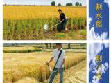 玉米秸秆回收割草机 二冲程背负式割草机