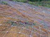 边坡防护网-道路专用网