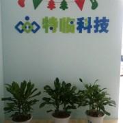 南京特临信息科技有限公司的形象照片