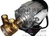 进口单相电容外置高压旋转叶片泵 锅炉给水 反渗透