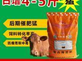 鲁西黄牛育肥饲料 鲁西黄牛专用育肥饲料