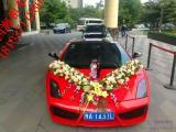 节假日出游就选郑州四海租车,中巴劳斯莱斯/兰博基尼婚车随意开