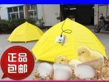 育雏器保温伞鸡苗脱温设备全自动控温设备