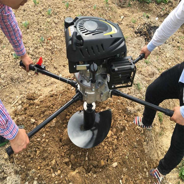 手提式汽油挖坑机 园林果树移栽挖坑机种植机