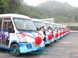 五菱燃油观光车