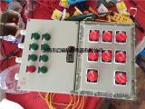 BEP56-7/100K防爆照明配电箱