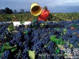 进口墨西哥葡萄需要哪些资料与单证
