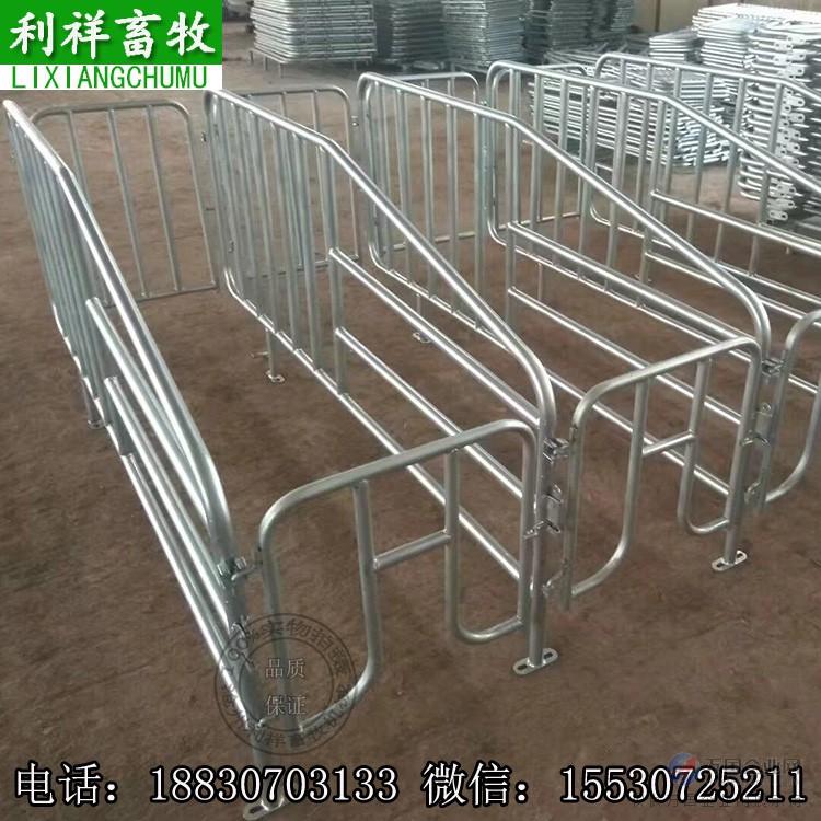 利祥农牧供应母猪定位栏产床设计尺寸图片