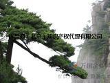 专项资质审批、办理北京建筑装修装饰二级资质