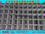 铁丝网 金属养殖用网片 苗床钢丝网片 质量保证