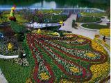 凤凰造型,花卉造型,植物绿雕