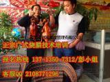 广式烧腊技术培训,深圳学习广式烧腊技术哪家好