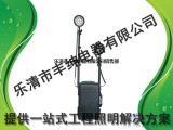 BJQ2054-R2移动照明系统BJQ2054-2*27W