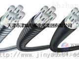 天津津猫线缆公司 TC90铝合金电缆