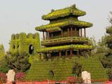五色草造型,节日花卉造型,城楼植物绿雕