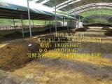 安福鸡粪发酵菌剂鸡粪有机肥菌种邓州汇邦生物物美价廉