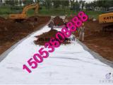 天然膨润土防水毯多少钱来山东英信_天然纳基覆膜型膨润土防水