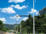 中山市绿中太阳能路灯LZT—021