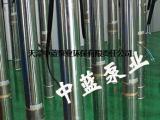 供应天津水泵316不锈钢潜水泵,耐腐蚀潜水泵
