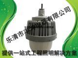 华荣GCD616防爆固态照明灯 华荣GCD616