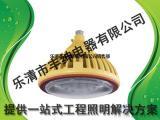 华荣BZD118防爆免维护低碳LED照明灯 华荣BZD118