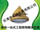 华荣BAD85-M防爆高效LED灯 华荣BAD85-M