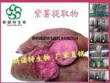 紫薯提取物粉 抗氧化 厂家直销
