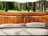 白蜡木北欧实木床 欧式简约双人床