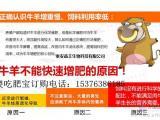 肉牛增肥专用饲料添加剂 肉牛益生菌厂家发货