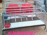 现货供应2100×3600母猪分娩产床质优价廉