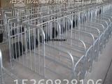 定位栏母猪限位栏厂家直销母猪保育栏价格批发