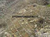 鱼池护坡网,护坡网生产厂家选时泰