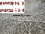四川护坡网|护坡铁丝网|护坡钢丝网批发