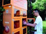学校寄存柜 共享篮球柜及电子篮球柜的系统介绍-福源