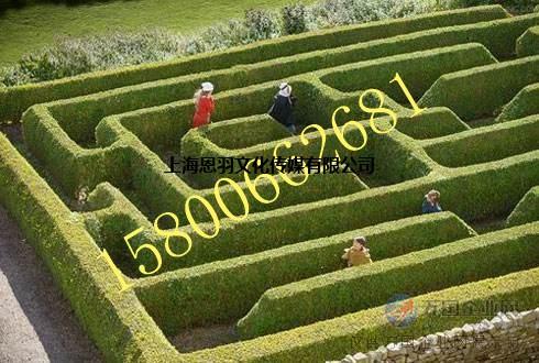 大型植物迷宫绿植迷宫出租创意设计绿植迷宫租赁