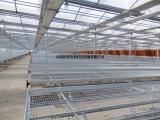 温室育苗床配件