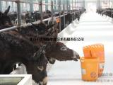 关中驴强效催肥饲料添加剂,驴强效育肥添加剂