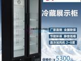 哪里有卖便利店展示柜的,便利店双门冷柜价格多少?
