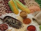 食品生产qs许可证怎么办?